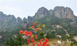 平江石牛寨导游提醒游客旅游购物需谨慎
