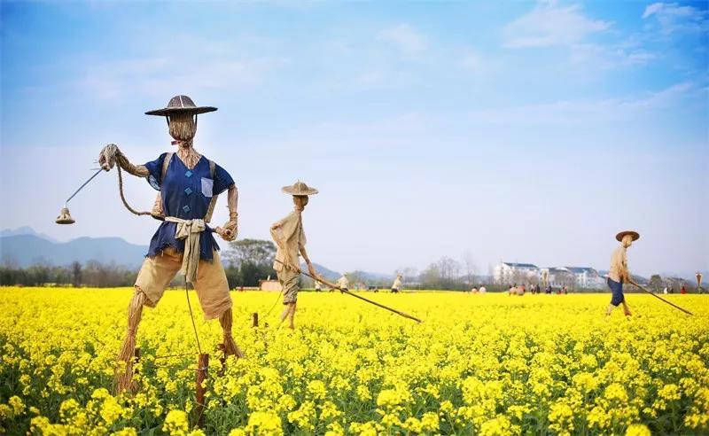 岳阳三月踏青春游,石牛寨油菜花节即将开幕!