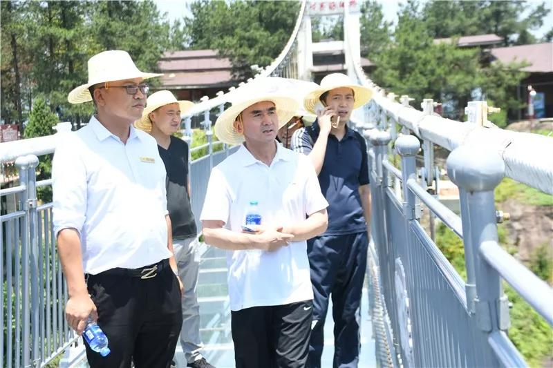 岳阳市文旅广电局副局长姚正国力赞石牛寨景区:极致体验创新的典型